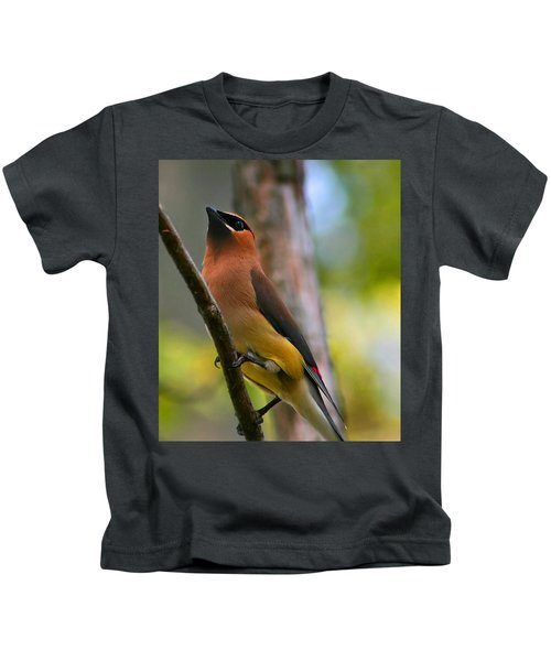 Cedar Wax Wing Kids T-Shirt by Roger Becker