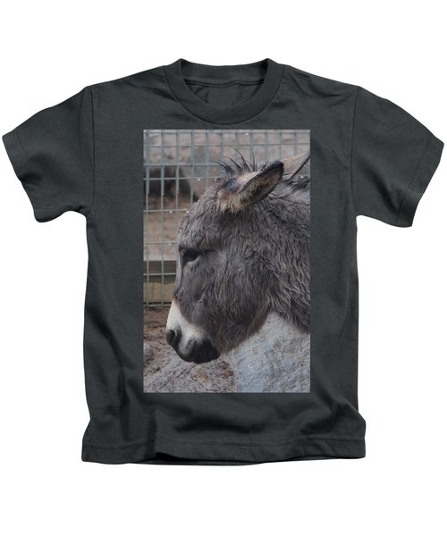 Christmas Donkey Kids T-Shirt