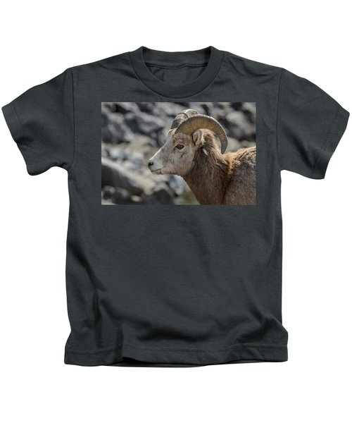 Close Big Horn Sheep  Kids T-Shirt