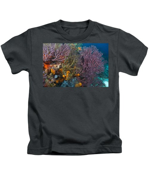 Colors Of Reefs Kids T-Shirt