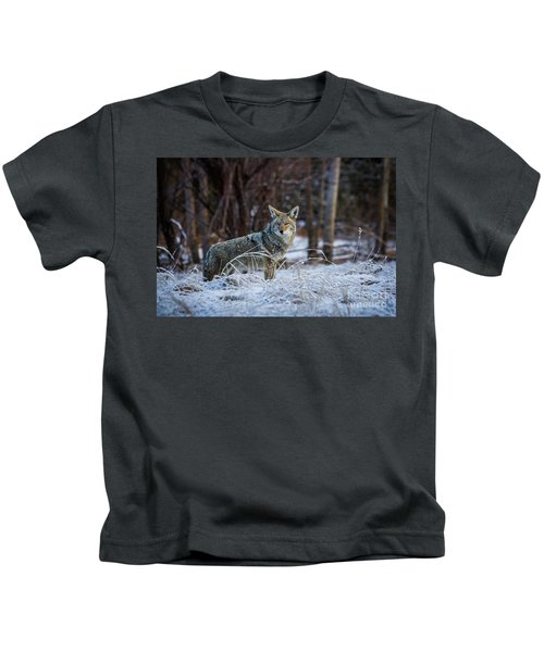 Coyote In The Meadow  Kids T-Shirt