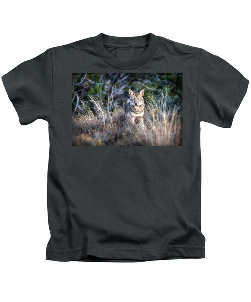 Coyote Stare Down Kids T-Shirt
