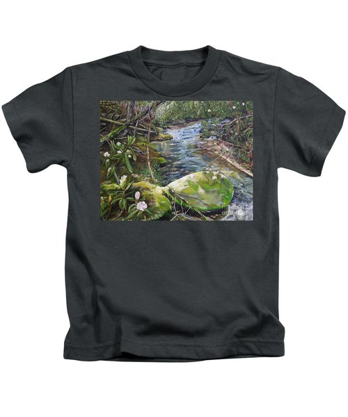 Creek -  Beyond The Rock - Mountaintown Creek  Kids T-Shirt
