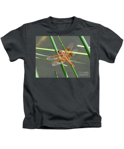 Dragonfly Orange Kids T-Shirt
