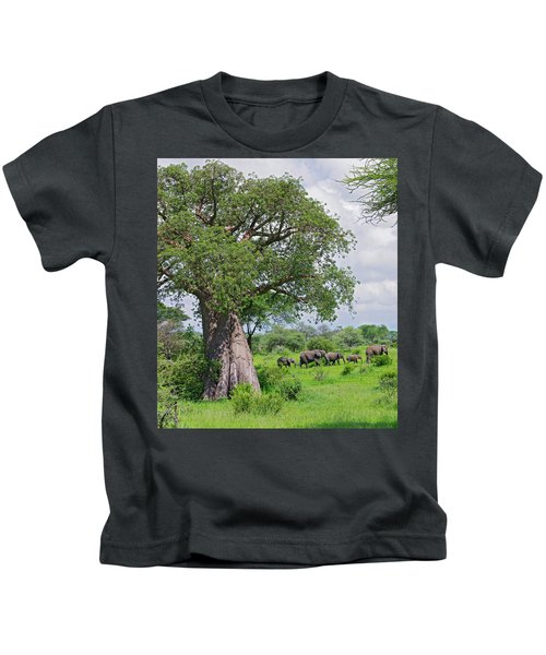 Elephants Walking Past Large Baobob Kids T-Shirt