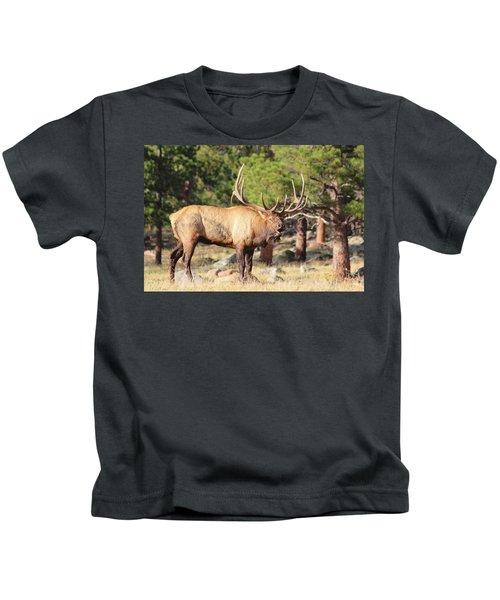 Evening Roundup Kids T-Shirt