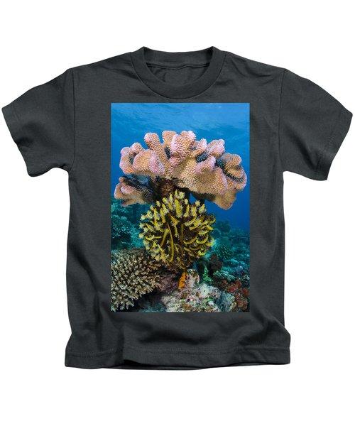 Feather Star Rainbow Reef Fiji Kids T-Shirt