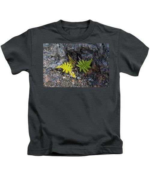 Ferns In Volcanic Rock Kids T-Shirt