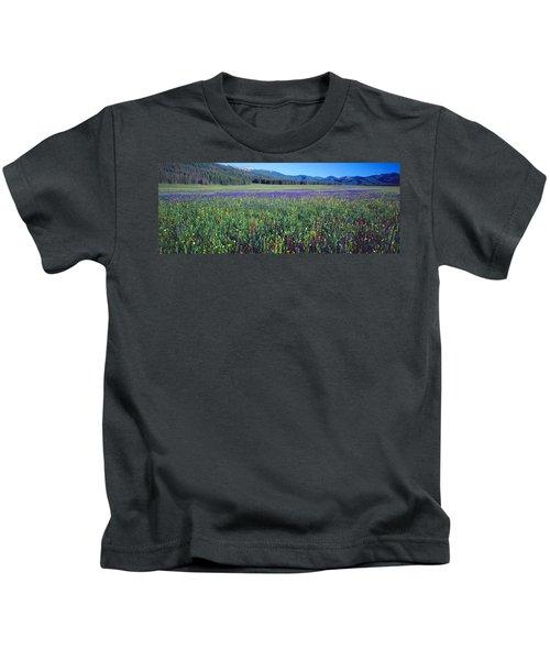 Flowers In A Field, Salmon, Idaho, Usa Kids T-Shirt