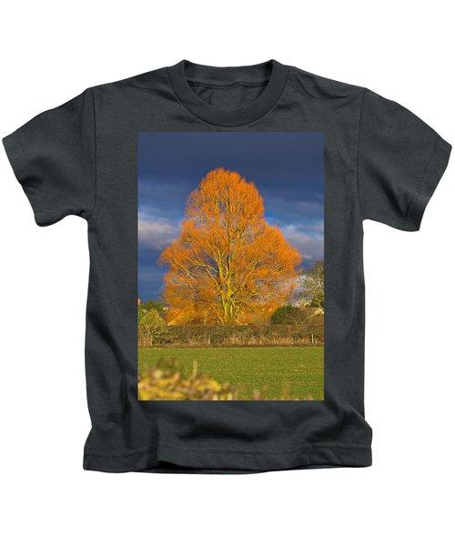 Golden Glow - Sunlit Tree Kids T-Shirt