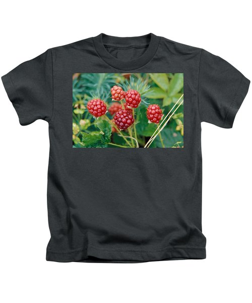 Highbush Blackberry Rubus Allegheniensis Grows Wild In Old Fields And At Roadsides Kids T-Shirt by Anonymous