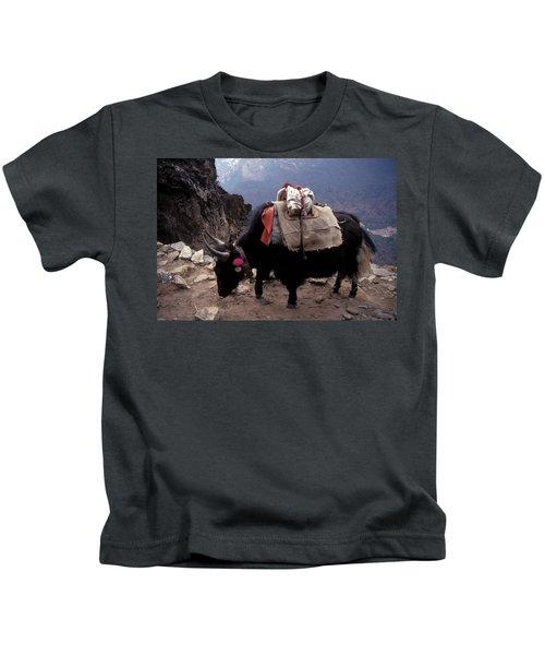 Himalaya Mountains Kids T-Shirt