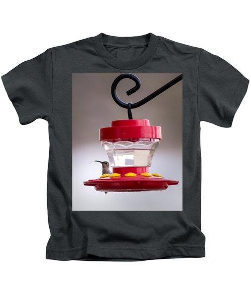 Hummingbird Tongue Kids T-Shirt