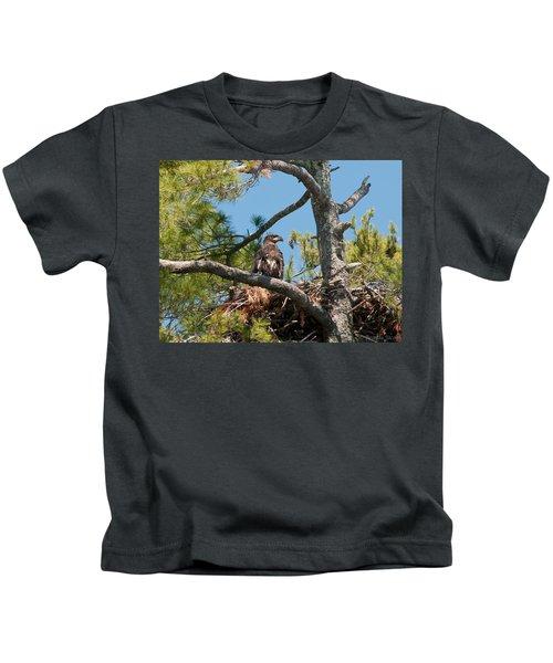 Immature Bald Eagle Kids T-Shirt