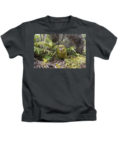 Kakapo Male In Forest Codfish Island Kids T-Shirt