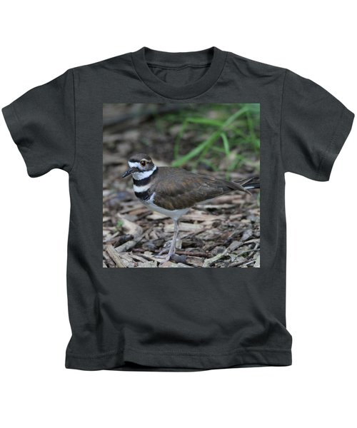 Killdeer Kids T-Shirt by Dan Sproul