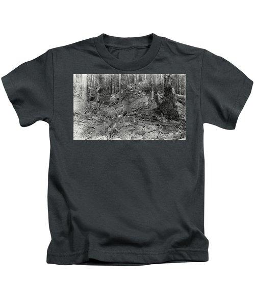 Logging A Redwood Hillside C. 1880 Kids T-Shirt