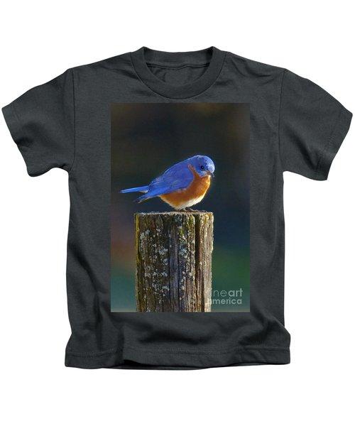 Male Bluebird Kids T-Shirt