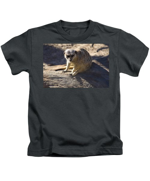 Meerkat Resting On A Rock Kids T-Shirt by Chris Flees