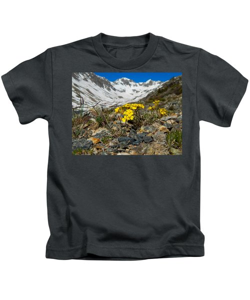 Blue Lakes Colorado Wildflowers Kids T-Shirt