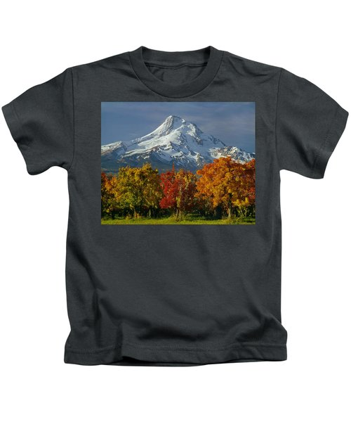 1m5117-mt. Hood In Autumn Kids T-Shirt