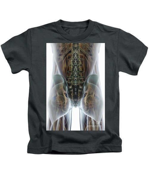 Muscles And Bones Of The Pelvis Kids T-Shirt