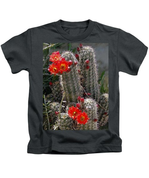 New Mexico Cactus Kids T-Shirt