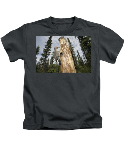 Northern Flicker At Nest Cavity Kids T-Shirt