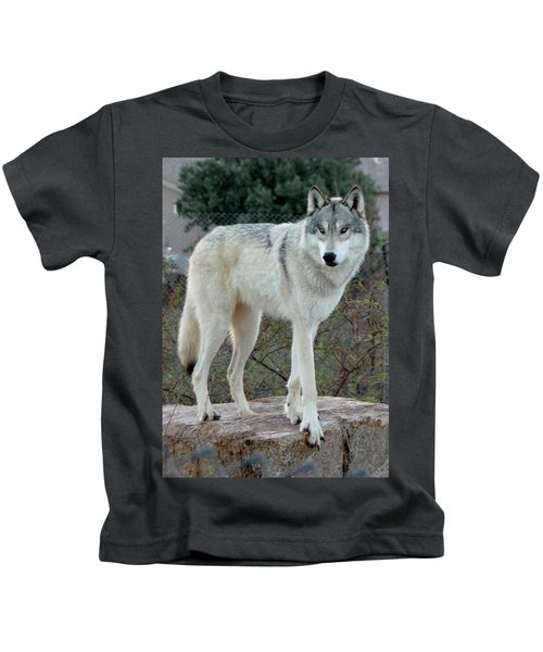 Out Of Africa Wolf  Kids T-Shirt