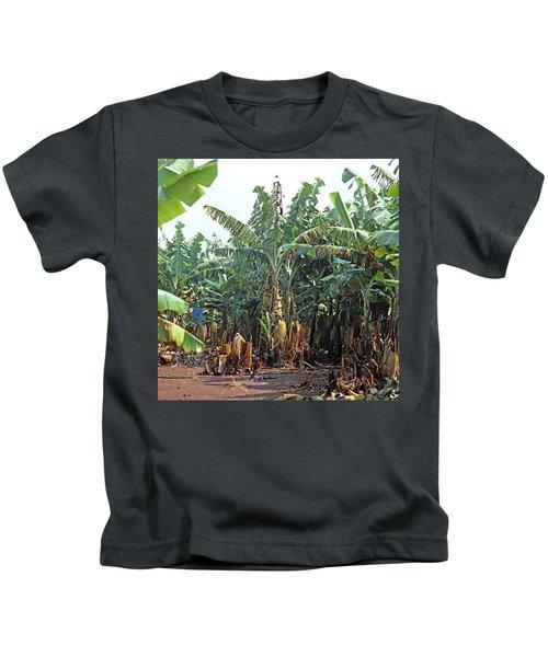 Panama Disease In Bananas Kids T-Shirt