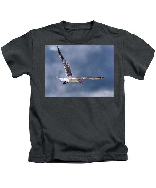 Royal Tern 1 Kids T-Shirt
