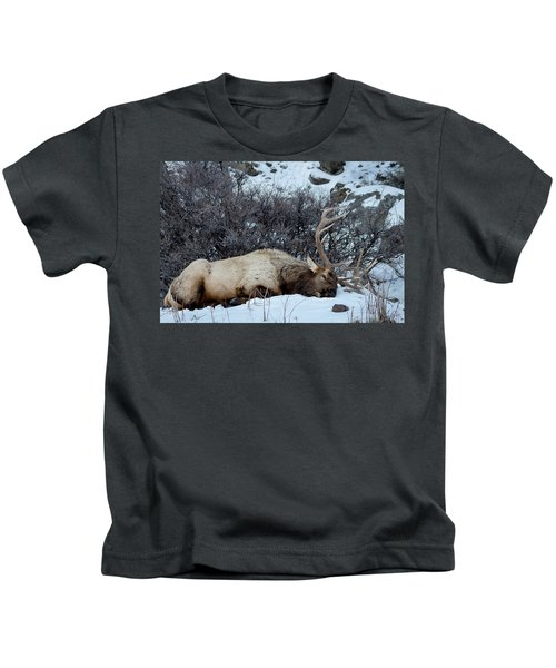 Sleeping Elk Kids T-Shirt