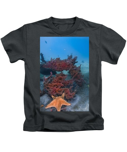 Sponges And A Star Kids T-Shirt