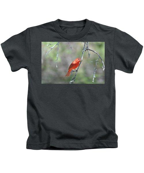 Summer Tanager Kids T-Shirt