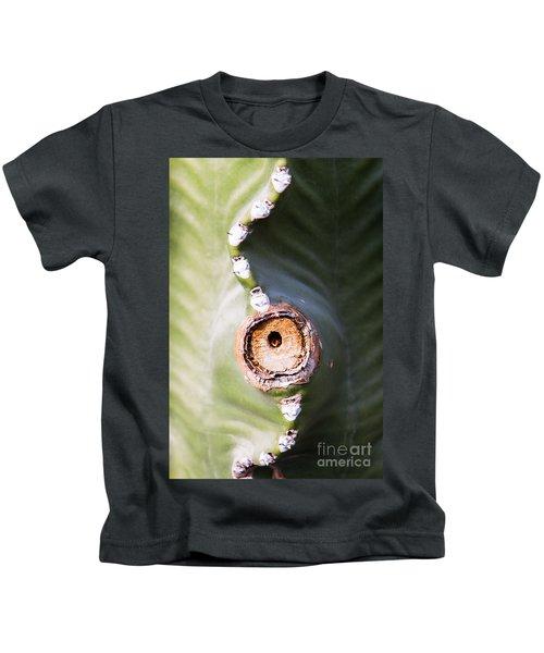 Sunlight Split On Cactus Knot Kids T-Shirt