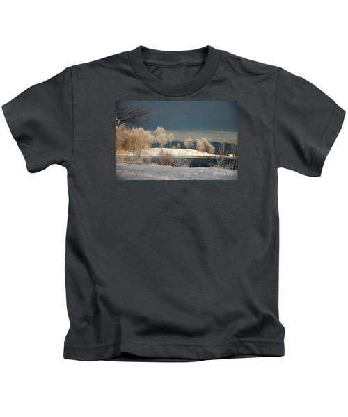 Swans On A Frosty Day Kids T-Shirt