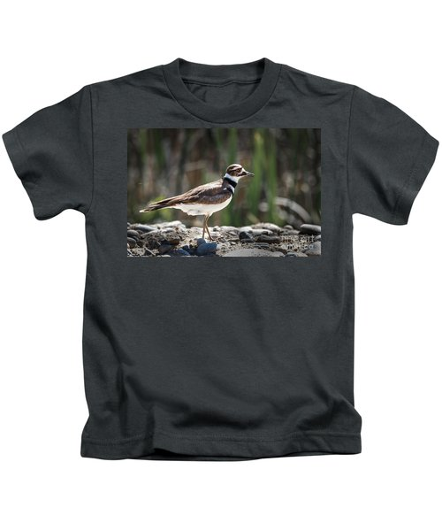 The Killdeer Kids T-Shirt by Robert Bales