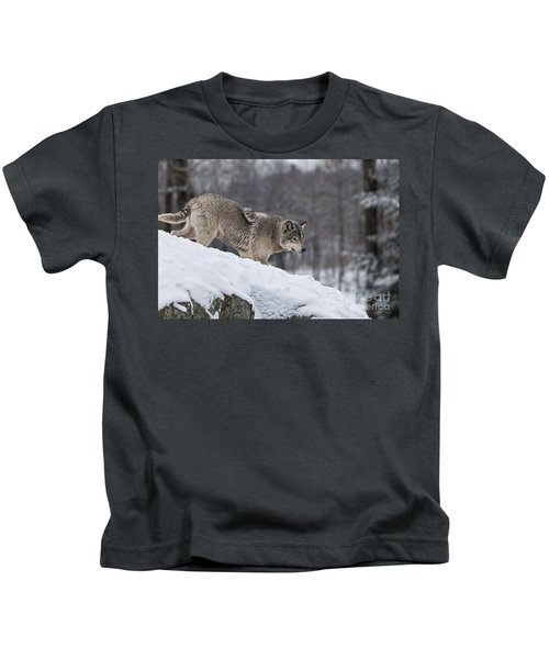 Timber Wolf On Hill Kids T-Shirt