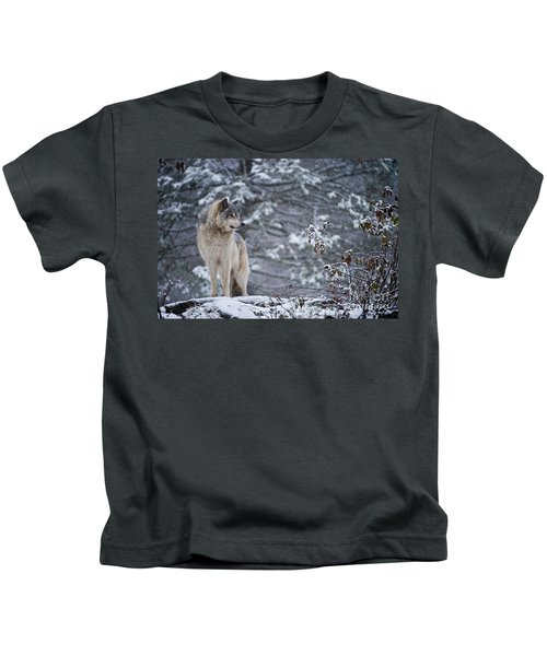 Timber Wolf Pictures 189 Kids T-Shirt