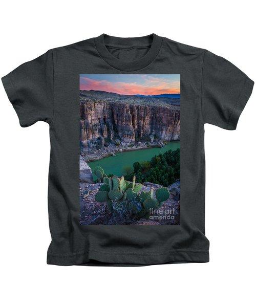Twilight Cactus Kids T-Shirt