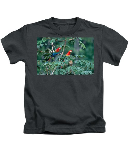 Two Macaws Kids T-Shirt