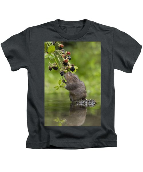 Water Vole Eating Blackberries Kent Uk Kids T-Shirt