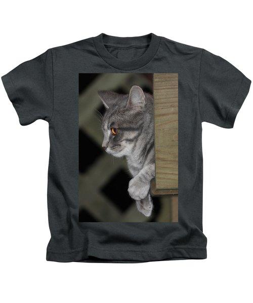 Cat On Steps Kids T-Shirt