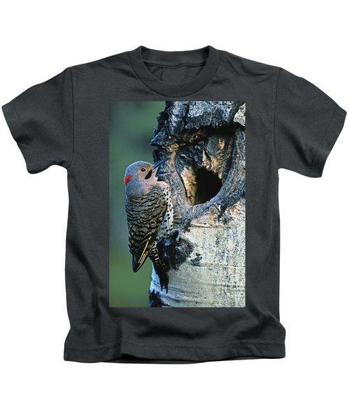 Northern Flicker Kids T-Shirt