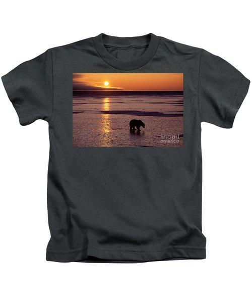 Polar Bear At Sunset Kids T-Shirt