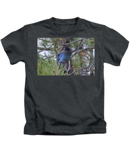 Stellar's Jay In Profile Kids T-Shirt