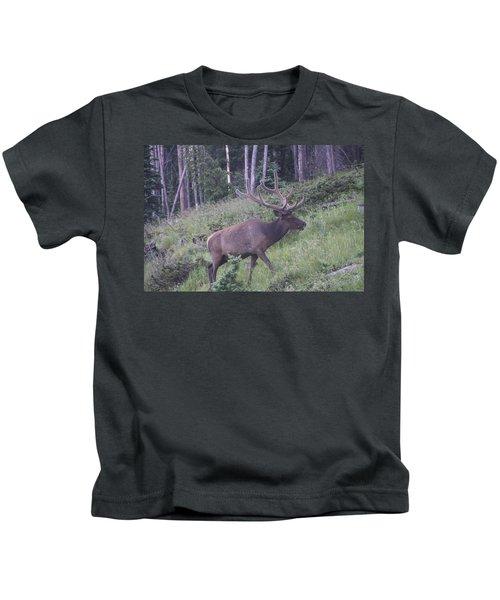 Bull Elk Rmnp Co Kids T-Shirt
