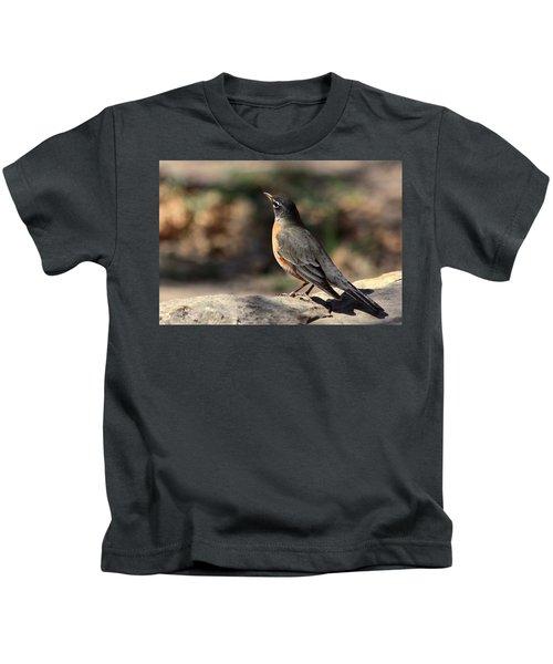 American Robin On Rock Kids T-Shirt