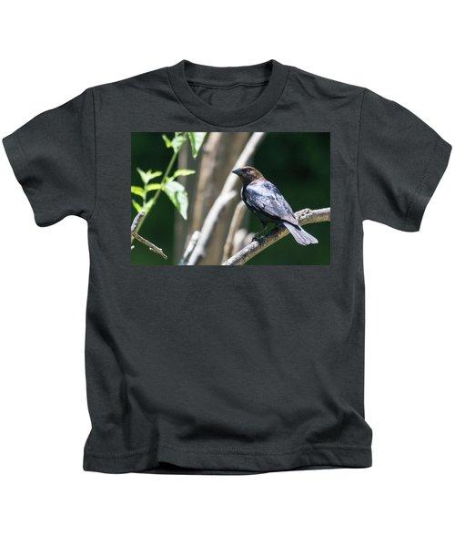 Brown-headed Cowbird Kids T-Shirt