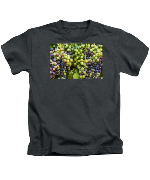 Colorful Wine Grapes On Grapevine Kids T-Shirt